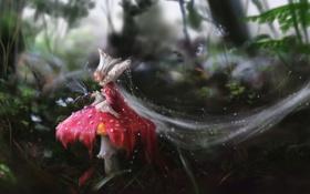 Обои лес, капли, букашка, роса, гриб, паутина, фея
