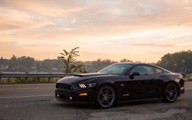 Обои Mustang, Ford, мустанг, форд, 2014, Roush Stage 2