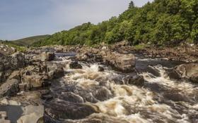 Картинка лес, камни, Англия, England, River Tees, река Тис