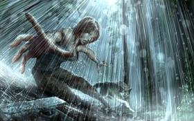 Картинка девушка, дождь, волк, Tomb Raider