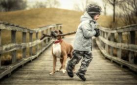 Обои настроение, ребёнок, собака
