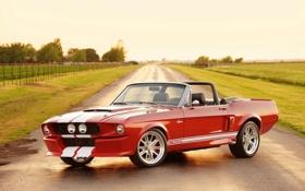 Обои дорога, небо, красный, полосы, тюнинг, Mustang, Ford