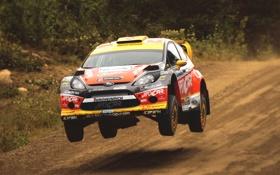 Обои Ford, Авто, Спорт, Машина, Гонка, Капот, WRC