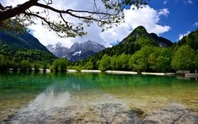 Обои лес, горы, озеро, Словения, Jasna Lake