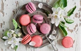 Картинка сладость, выпечка, sweets, pastries, Макаруны, Macaroni
