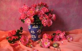 Обои розы, тюль, лепестки, ваза