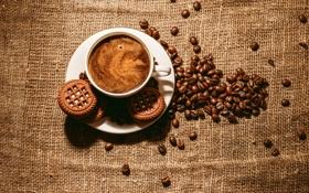 Картинка пена, кофе, зерна, печенье, чашка, блюдце, печеньки
