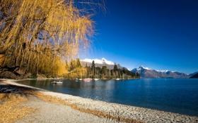 Обои песок, осень, пляж, небо, деревья, горы, озеро