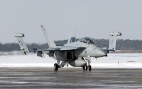 Обои самолёт, оружие, EA-18G