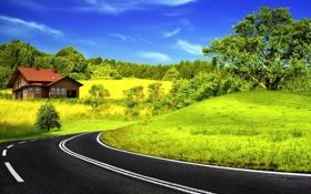 Обои дорога, трава, деревья, пейзаж, природа, листва, домик