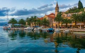 Картинка море, небо, пальмы, люди, дома, Хорватия