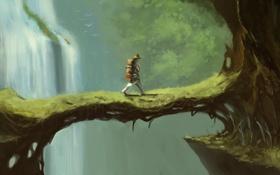 Картинка горы, мост, человек, водопад, тропа, шляпа, переход