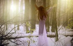Обои лес, девушка, природа