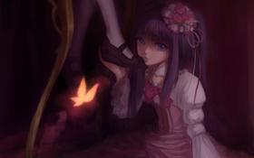 Обои бабочка, розы, Девушка, шляпка, нога, бантик