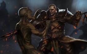 Обои копье, diablo 3, крестоносец, reaper of souls