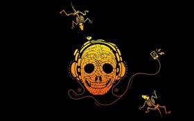 Картинка череп, птичка, слушает, скелеты, Плеер
