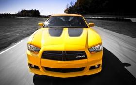 Обои Желтый, Додж, Капот, Dodge, SRT8, Фары, Charger