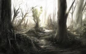 Обои лес, деревья, природа, стволы, чаща, арт