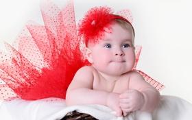 Обои Little girl in a red skirt, Маленькая девочка в красной юбке, интерес, красный цветочек, red ...