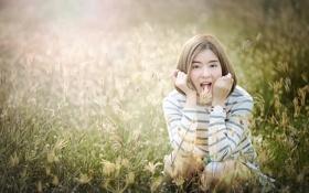 Обои поле, лето, трава, девушка, лицо, волосы