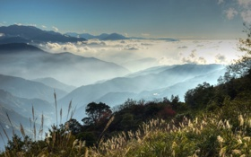 Картинка небо, трава, горы, туман, вершина