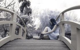 Картинка девушка, мост, Catia