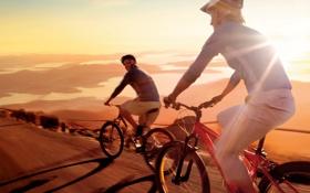 Обои дорога, природа, велосипедисты