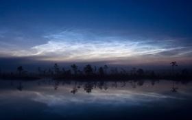 Картинка небо, вода, деревья, природа, отражение, тень, звёзды