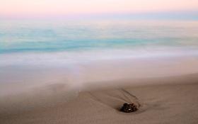 Картинка камень, пляж, утро, море