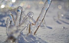 Картинка лёд, зима, лед, снег, макро, боке