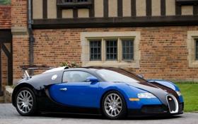 Обои Синий, Машина, Бугатти, Bugatti, Вейрон, Машины, Veyron