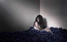 Обои девушка, цветы, одиночество, комната