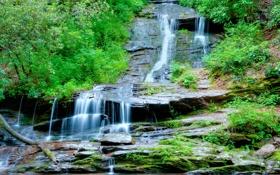 Обои деревья, пейзаж, горы, ручей, скалы, водопад, поток