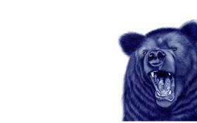 Картинка медведь, нарисованный, белый, пасть, фон