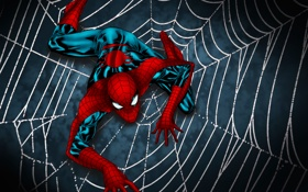 Картинка spider man, web, shadowsuit
