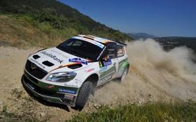 Обои Пыль, Капот, Занос, День, WRC, Rally, Ралли