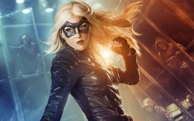 Обои девушка, маска, блондинка, костюм, перчатки, комикс, Arrow