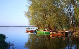 Картинка небо, деревья, река, лодка