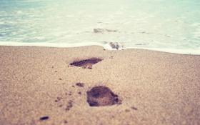 Обои 2560x1600, print, water, вода, sand, море, песок