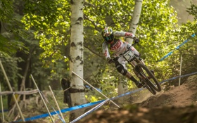 Обои гонка, лес, велосипед, спорт