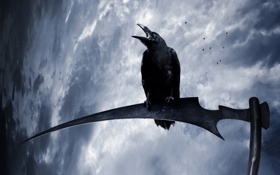 Картинка дождь, коса, страшно, ворона, crow, неба, creepy
