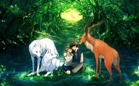 Обои лес, вода, девушка, пруд, олень, арт, волки