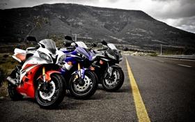 Обои дорога, разметка, honda, Мотоциклы