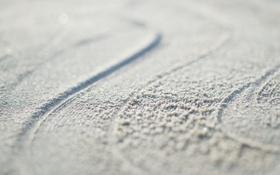 Обои песок, макро, линии, следы, 1920x1200, lines, macro