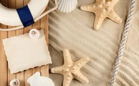 Обои песок, бумага, круг, улитки, канат, компас, морские звезды