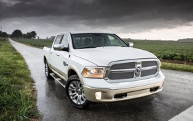 Обои Dodge, white, storm, gold, rain, horns, water