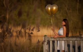 Картинка трава, девушка, шарики, забор, боке