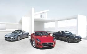 Обои красный, фон, чёрный, вилла, Jaguar, серебристый, Ягуар