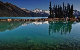Картинка лес, вода, деревья, пейзаж, горы, природа, озеро