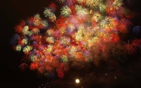 Обои праздник, фейерверки, firework